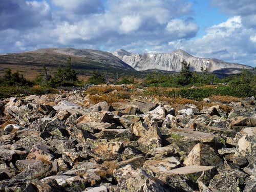 Snowy Range from Rock Creek Knoll