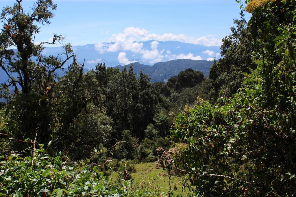 From Cerro de la Muerte
