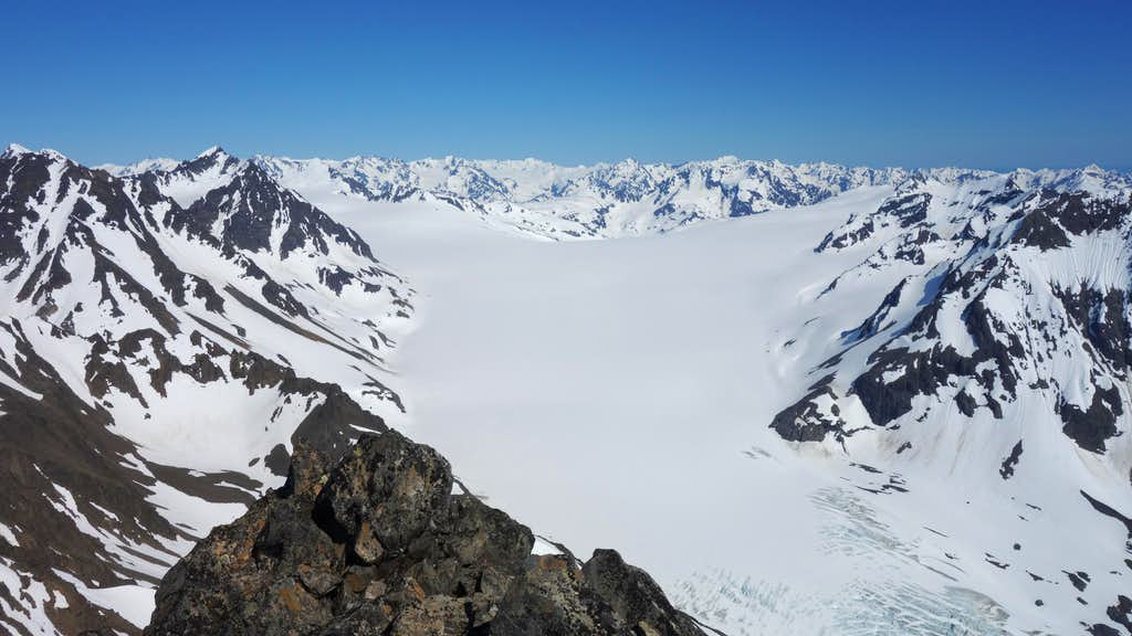 Godwin Glacier from the summit of Alice