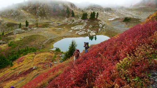 Meadows and Tarns of Yellow Aster Butte