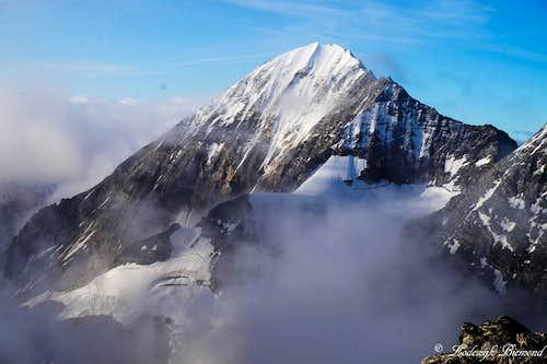 Konigspitze / Gran Zebru (3851m)