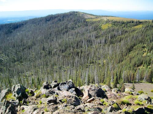 View FROM Mt Baldy South Apparent Summit