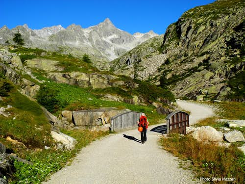 Cornisello, start of the trail