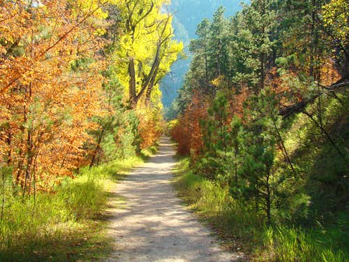 Autumn on the Little Elk Canyon Trail