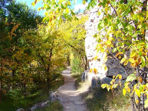 Little Elk Trail near Trailhead