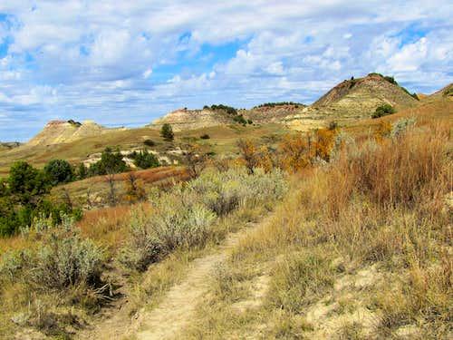 On Paddock Creek Trail