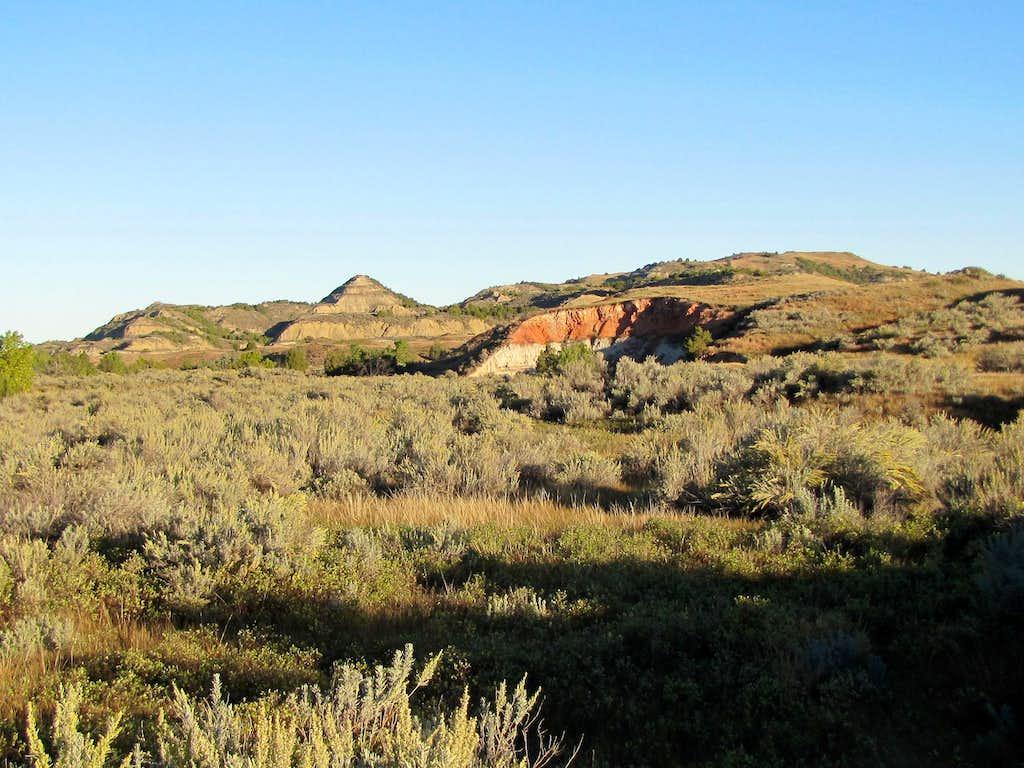 Upper Paddock Creek Trail