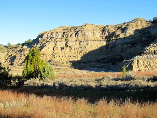 Steep hills on Upper Paddock Creek Trail