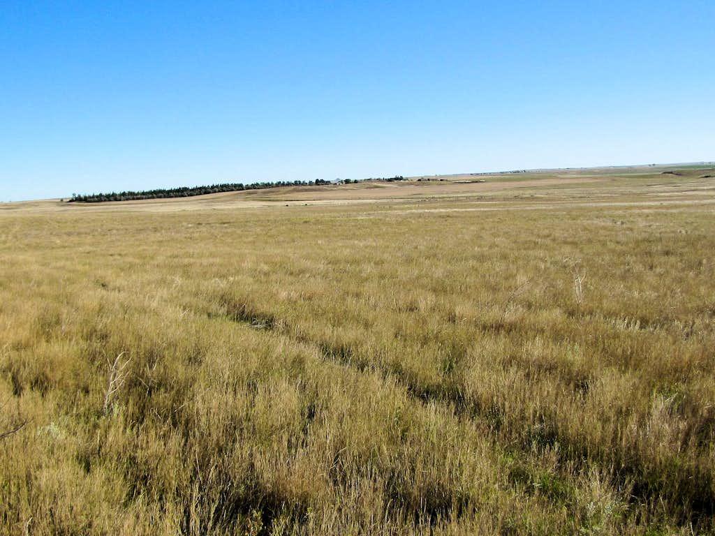 Flat Grasslands from Rim Trail