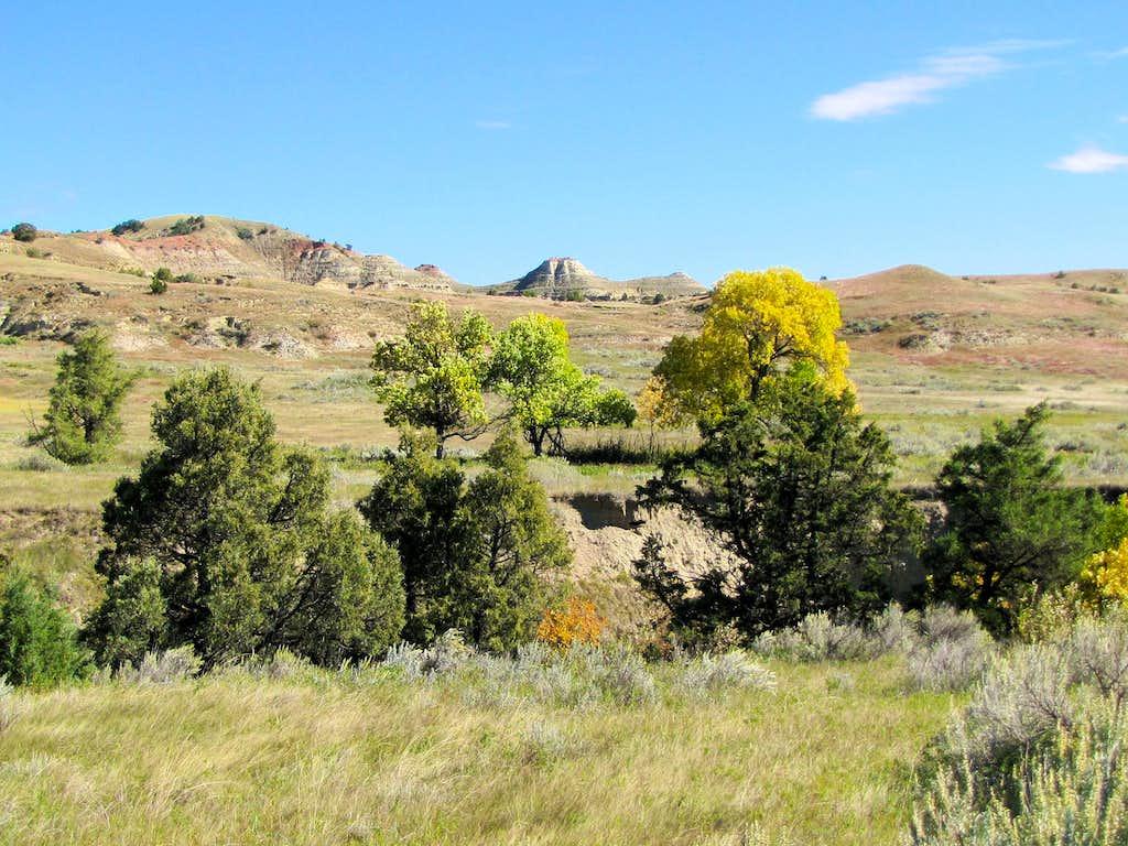 Knutson Creek Valley