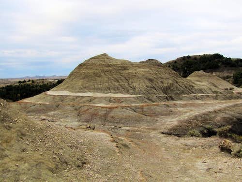 South Petrified Forest Trail
