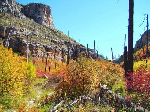 An Autumn Trip Through Hell Canyon