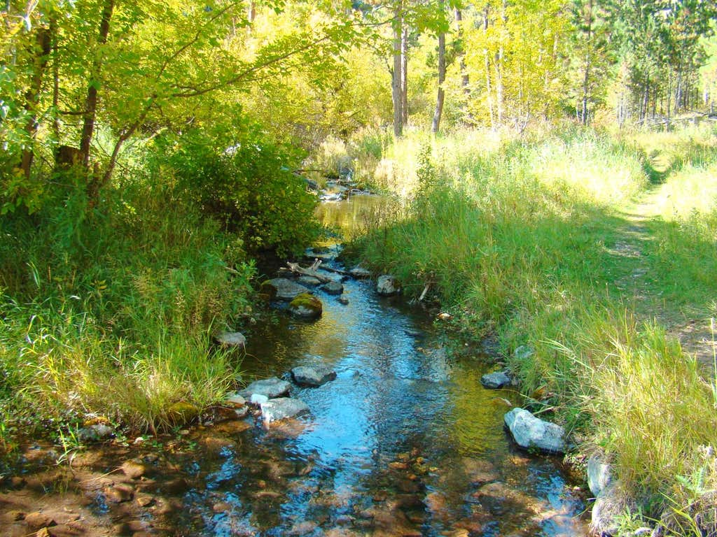 Small Stream in Hell Canyon