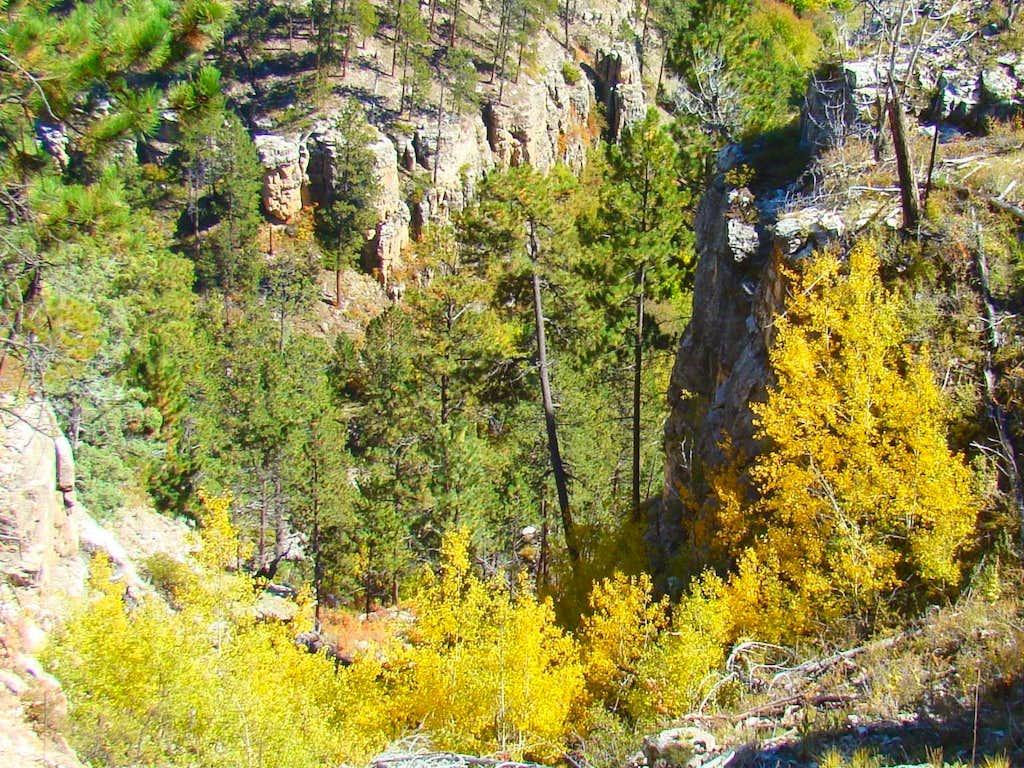 Narrow Upper Canyon