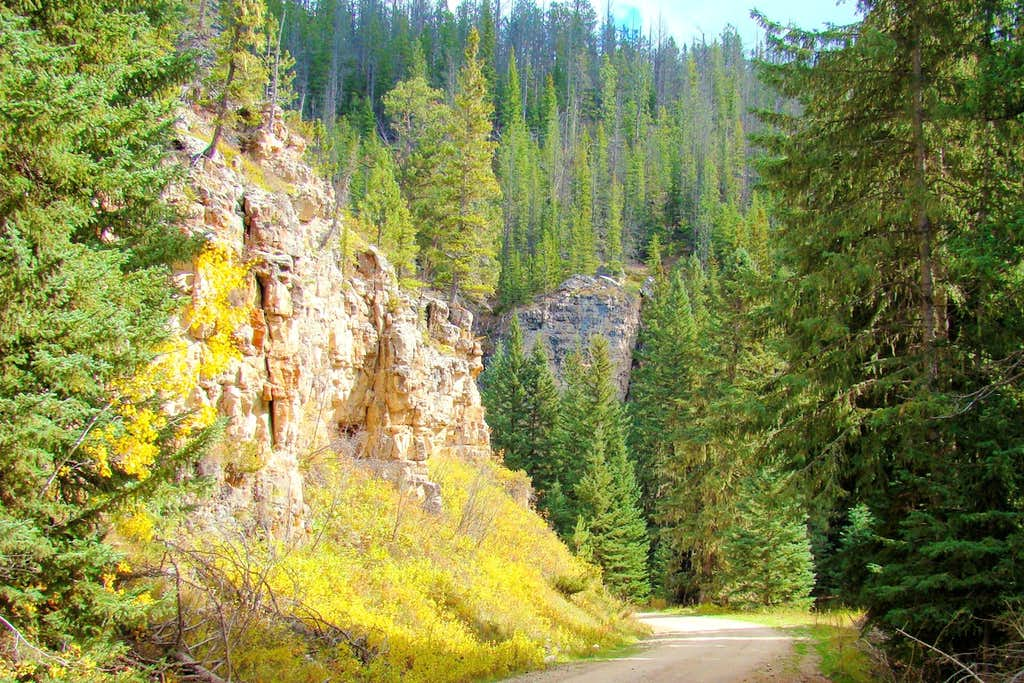 Autumn in Rhoades Fork Canyon