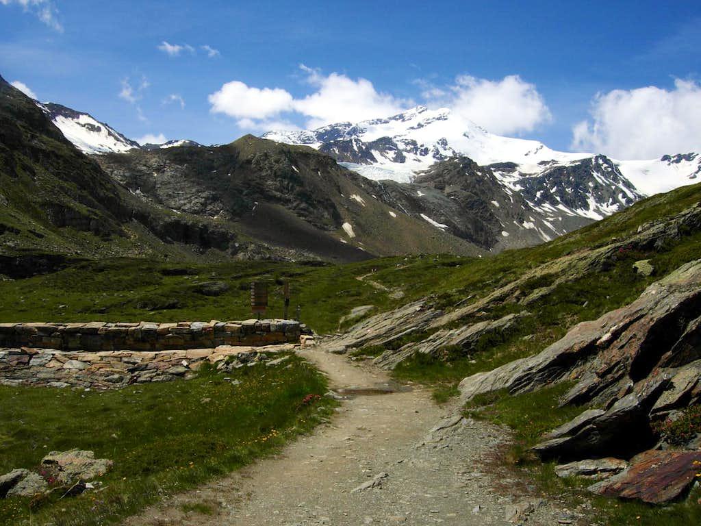 On the return way: Rio Plima Valley and Cima Lago Gelato