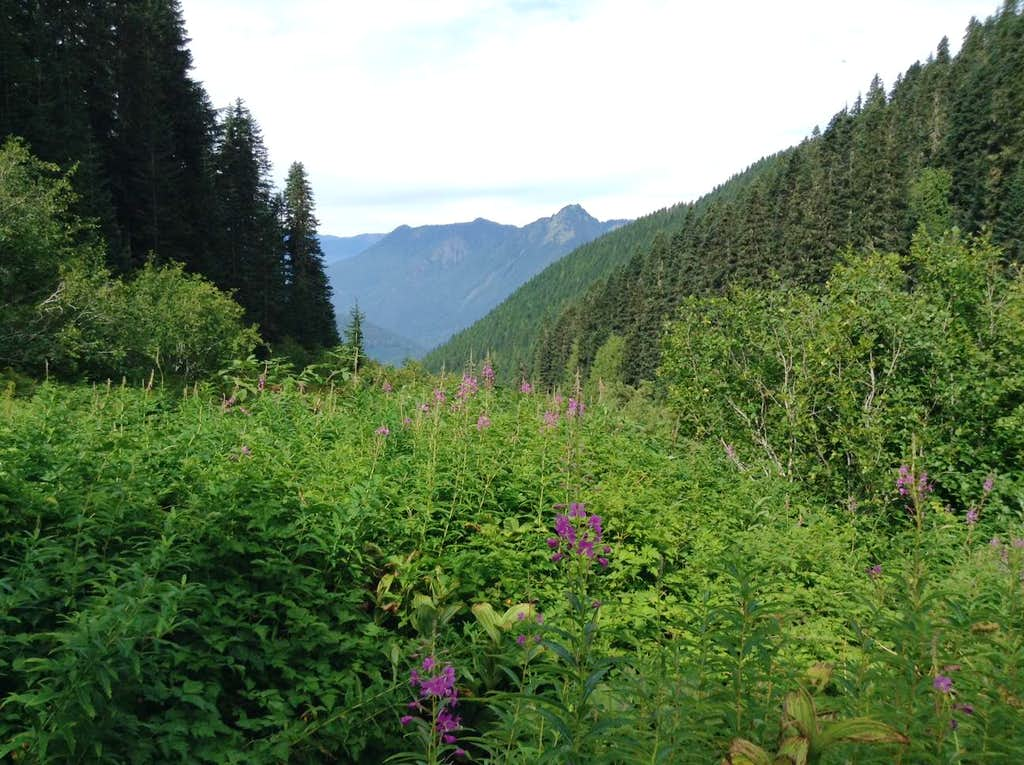 On the Trail to Hidden Lake Peaks