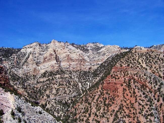 View north from Razor Ridge...