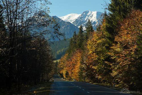 Javorina road