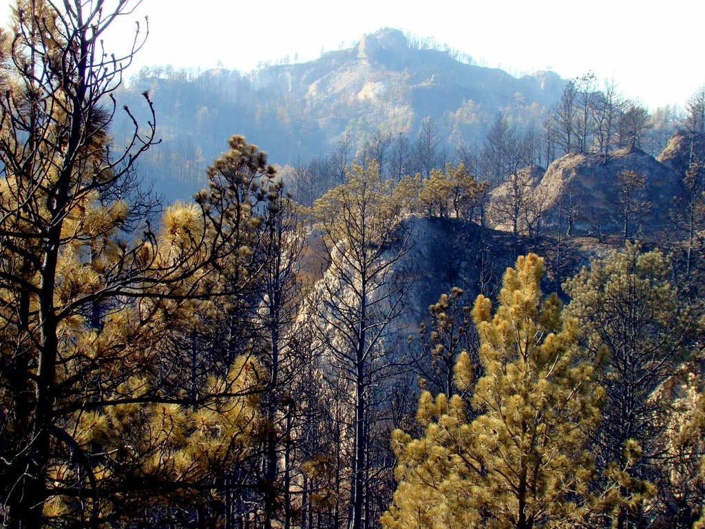 Flannigan Butte Fire Damage