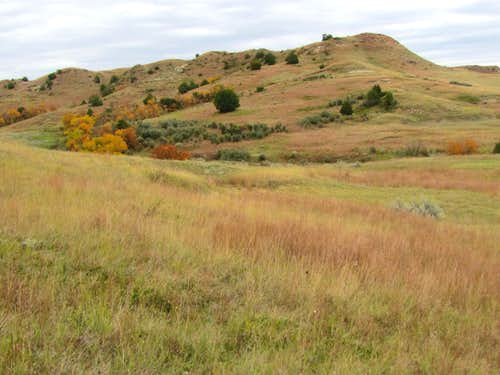 Roundup Trail