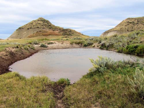 Water hole on Roundup Trail