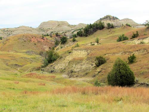Near the east end of Jones Creek Trail