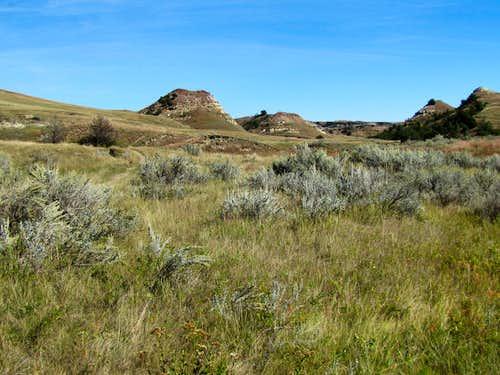 Jones Creek Trail