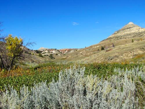 Near the west end of Jones Creek Trail