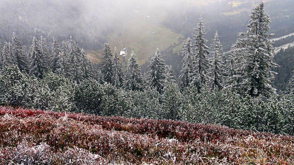 Neuberg meadows from below Gerzkopf