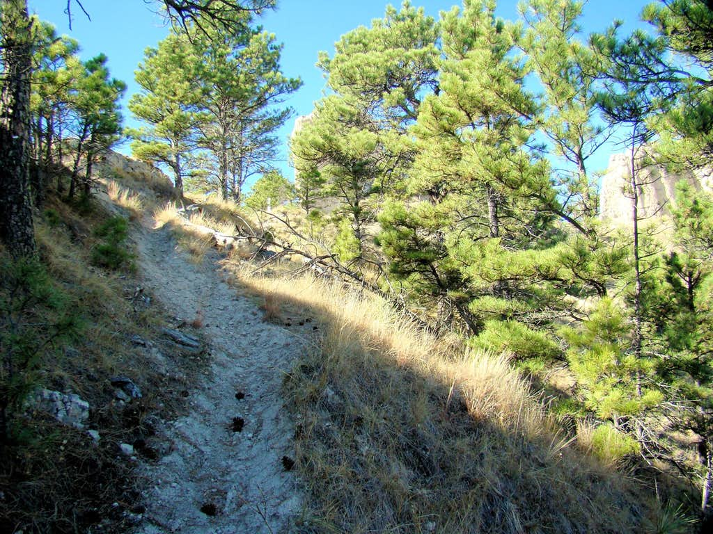 Steep Section of Trail