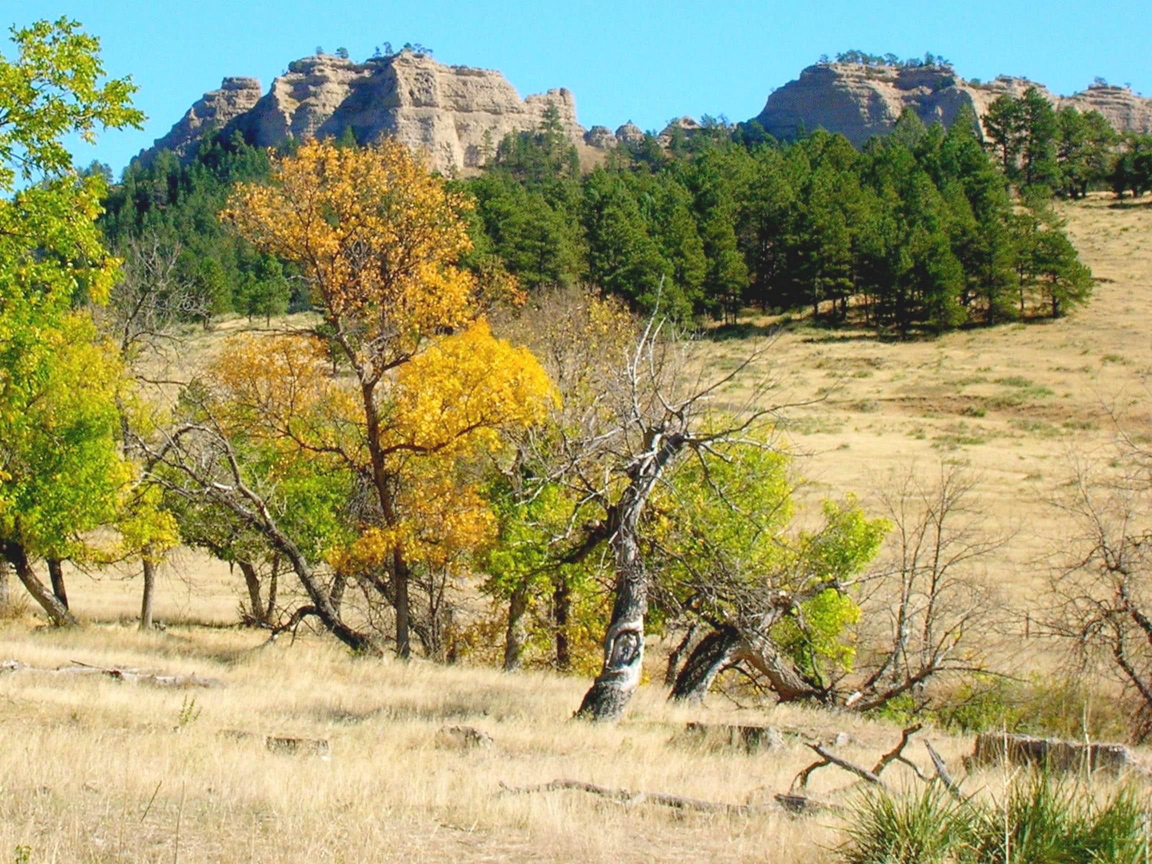 Barrel Butte