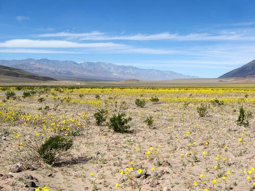 Death Valley & the Panamint Range