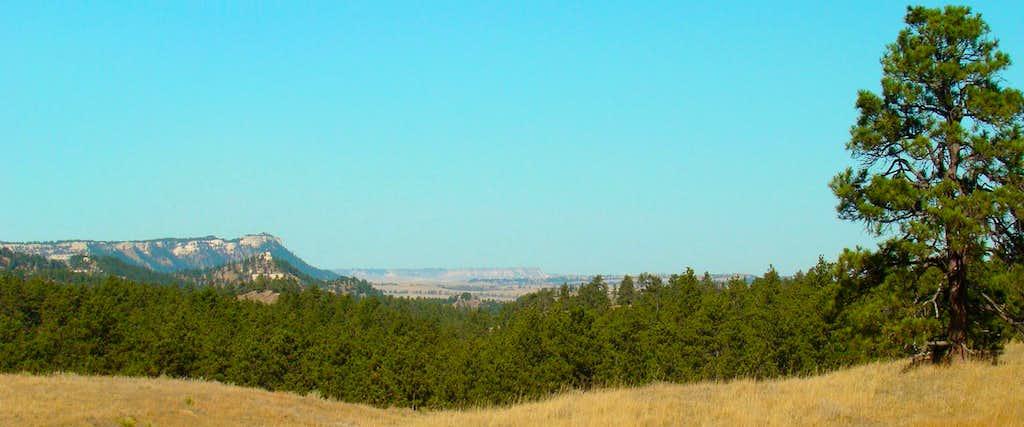 Wildlife Area View Northwest