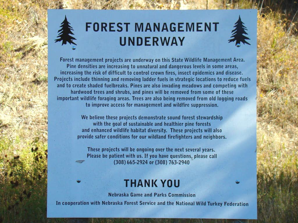 Forest Management Sign