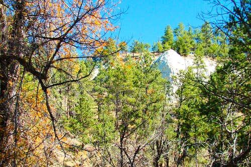 Canyon Side at Gilbert-Baker WMA