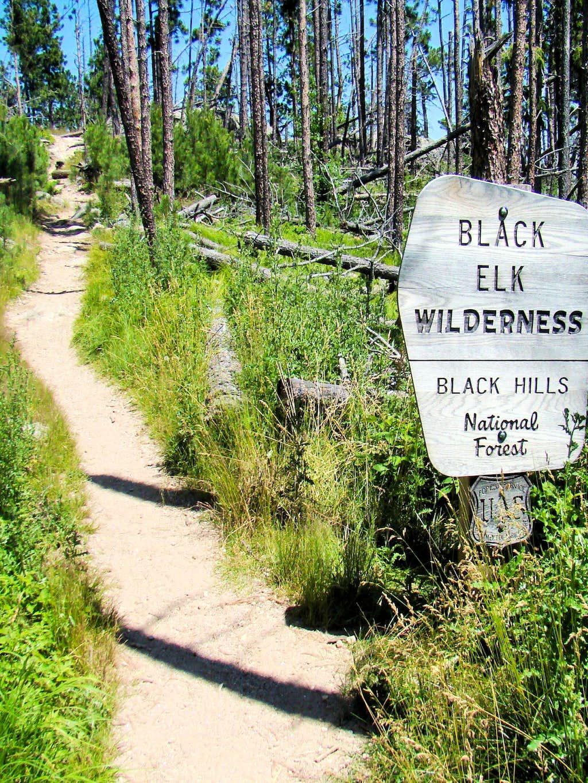 Trail 3 Black Elk Wilderness