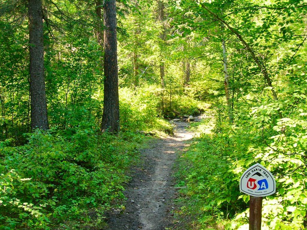 Lost Cabin Trail View