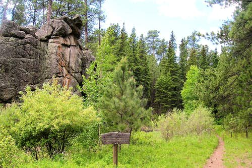 Center of Black Elk Wilderness