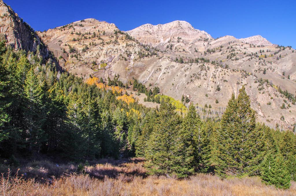 South Willow Peak