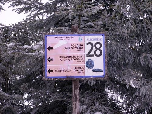 Ski races ...