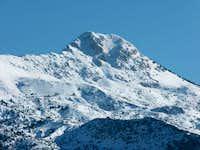 Mt artemisio