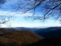 Vosges 002