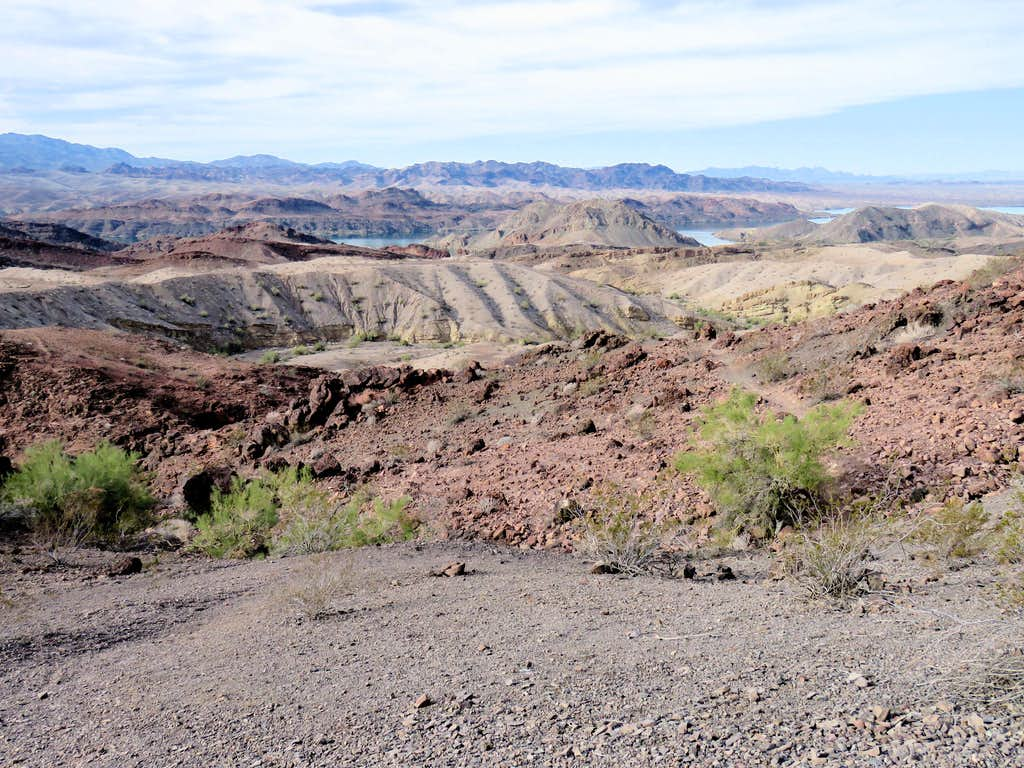 Lake Havasu from Blue Trail