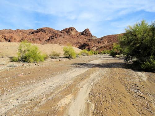 Slopes of Lizard Mountain
