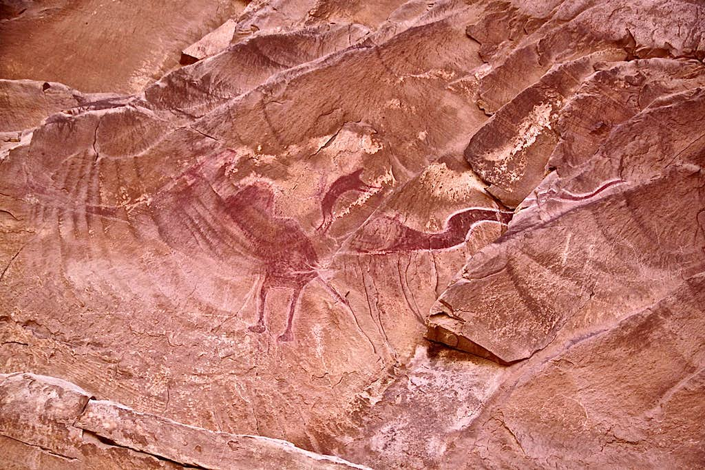 Pictograph of the dragon