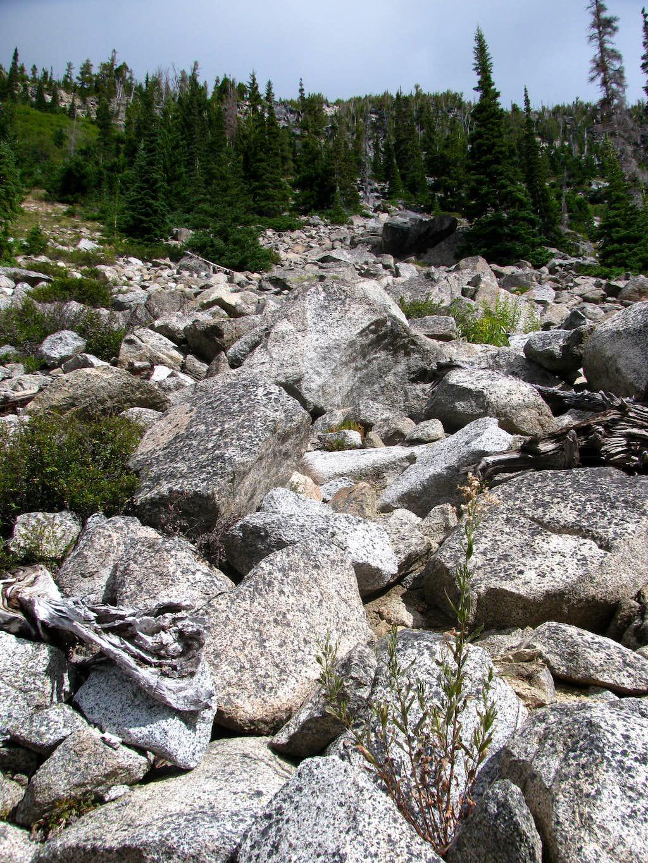 Heading up the Axis Peak Boulderfield
