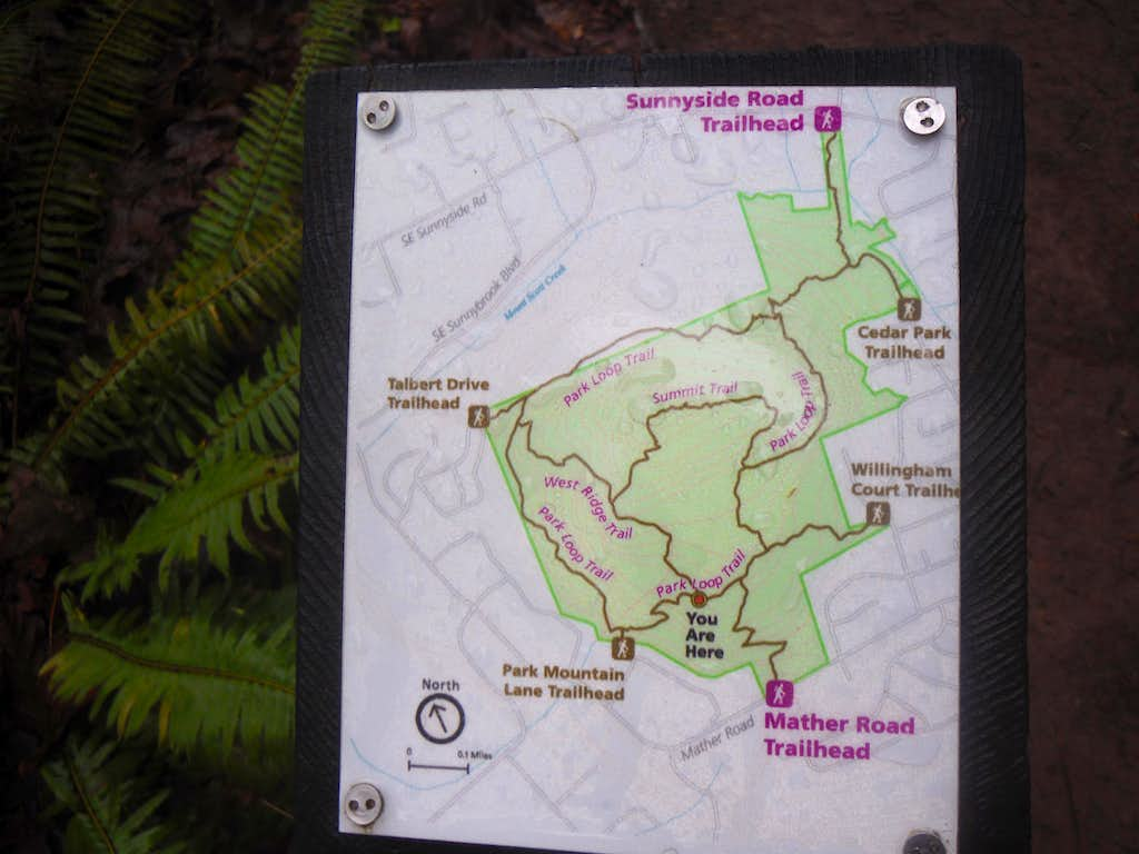 Another Map of the Park