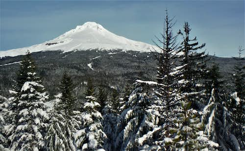 Another Mount Hood shot