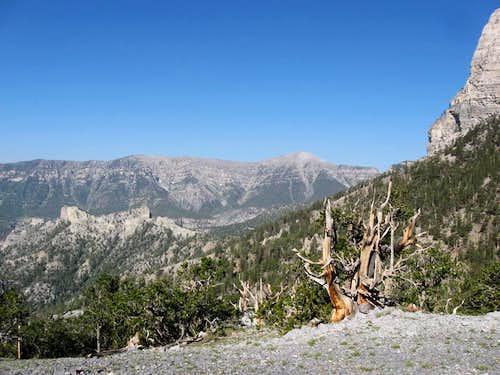 Looking West to Cockscomb Ridge & Charleston Peak